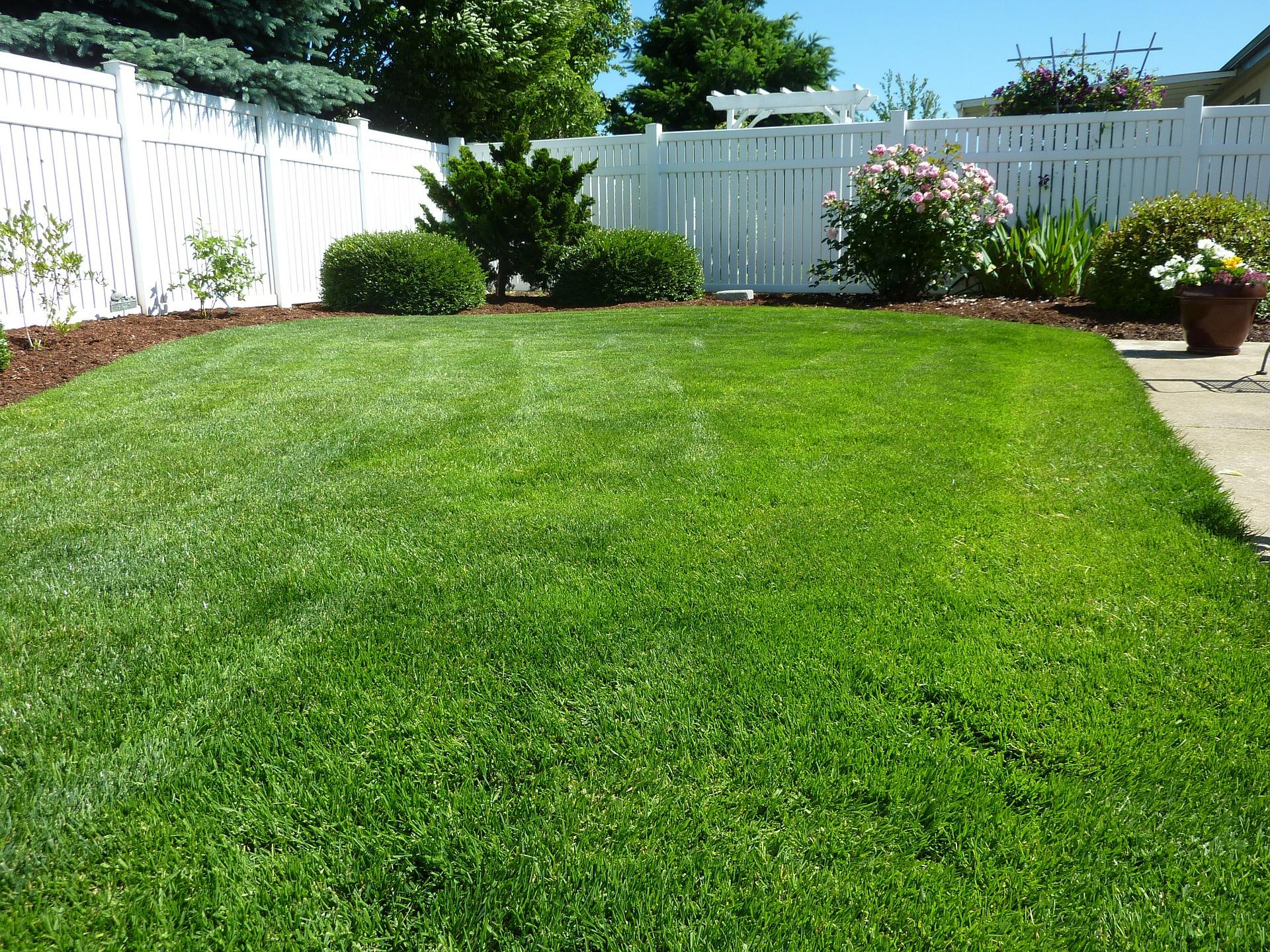 Marvelous How Important Is Phosphorus To My Lawn In Marietta, Georgia?